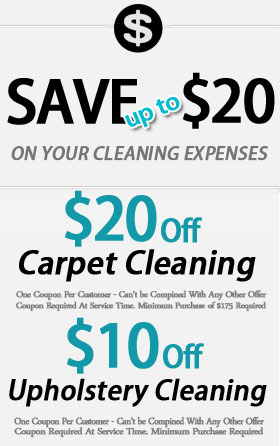 Pasadena Tx Pollen Stain Removal Carpet Steam Cleaners